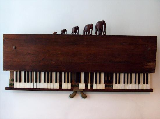 La marche lente des éléphants