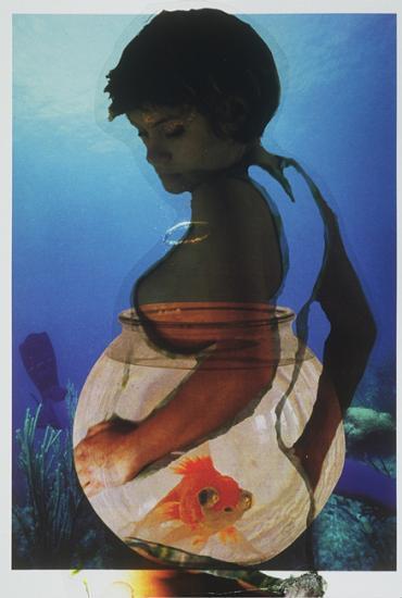 Sirène n°11