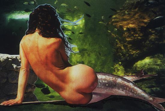 Sirène n°2
