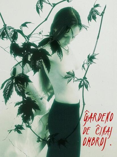 Le jardin des ombres chinoises